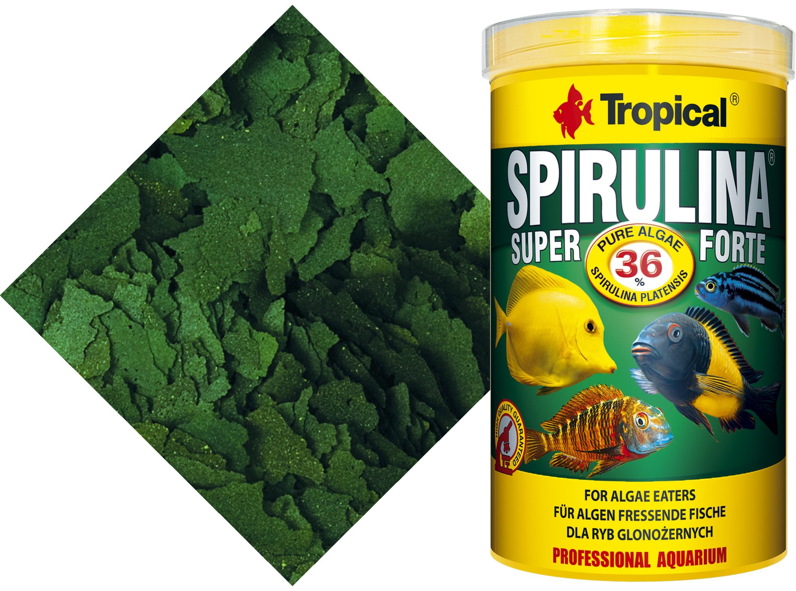 TROPICAL SPIRULINA SUPER FORTE 36% 5000ml./950gr.