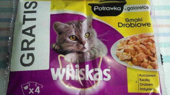 500 szt Whiskas 0,59gr potrawka w galaretce