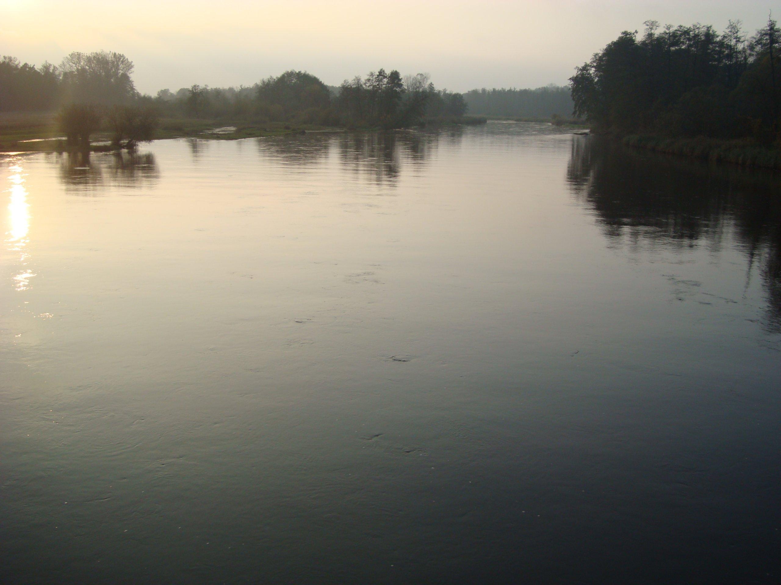 działka nad rzeką Pilicą Białobrzegi 70km