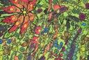 *NEXT* Tuniczka letnia -kolorowa 10 36 38 Kolor inny kolor