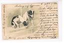 Pocztowka , obieg, Pieski. 1904 r.