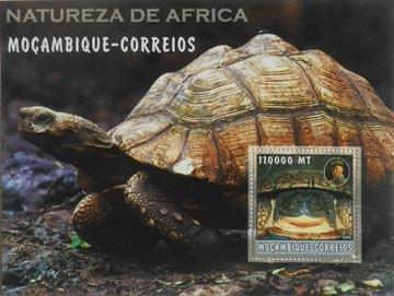 Скаутинг скаутинг Баден-Пауэлл, Мозамбик #MOZ2274 доставка товаров из Польши и Allegro на русском