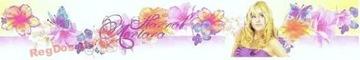 Bordový okraj Hannah Montana dekoratívna lišta 10.6c