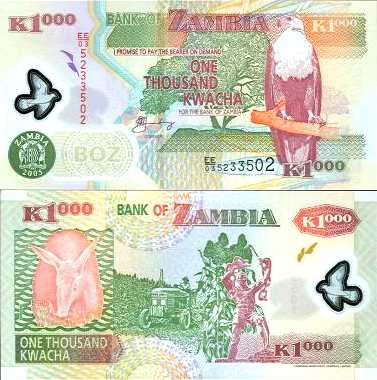 ~ Замбия 1000 Квач P-44d 2005 ПОЛИМЕР Слон UNC