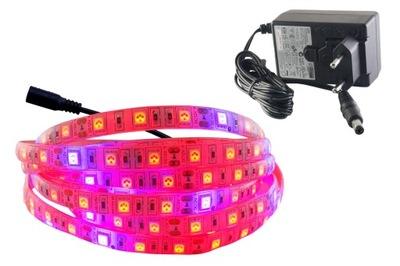 NASTAVIŤ pásky IP65 300 LED RAST rast rastlín 1,5 m