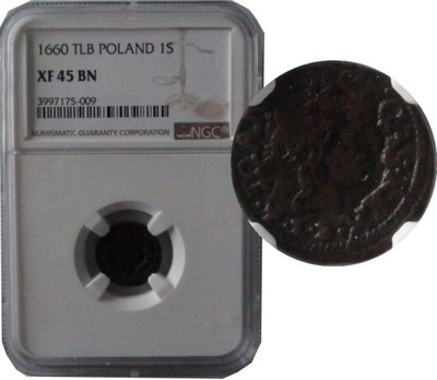 МАЛЕНЬКИЙ 1660 TLB  КАЗИМЕЖ -КЛАССИФИКАЦИИ NGC XF45 BN