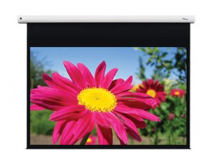 Ekran Elektryczny 109 cali OPTOMA DE-1109EGA WAWA