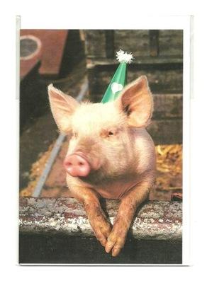 Karnet - Karnawałowy zadumany prosiaczek / świnka