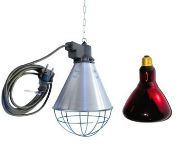 Дешевые Отопление курятника свинарника светильник + лампа