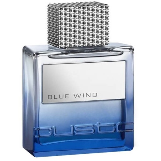 custo barcelona blue wind
